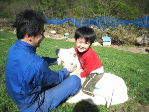 みみちゃん(ヤギ)に乗ってご満悦の豪太朗(長男)2010.5.22