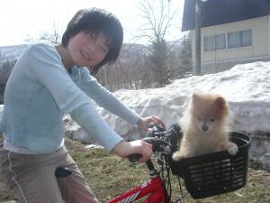 アトムはいちごと一緒に自転車でお散歩中。2008.3.23