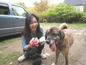 ペコたん(雑種)に飼い主さんが会いに来てくれました。いっぱいお散歩してもらってお疲れのようですね。2008.10.10