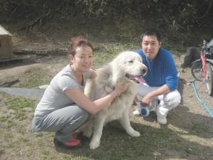 関ちゃん(関羽・ピレニーズ)は大きくて、優しくて、とっても可愛い子でした~。2009.5.11